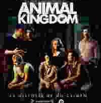 animal kingdom torrent descargar o ver pelicula online 16