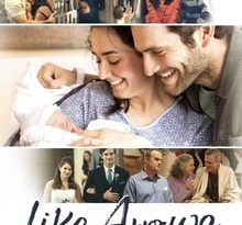 like arrows torrent descargar o ver pelicula online 5