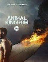animal kingdom - 1×06 torrent descargar o ver serie online 7