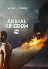 animal kingdom - 1×06 torrent descargar o ver serie online 1