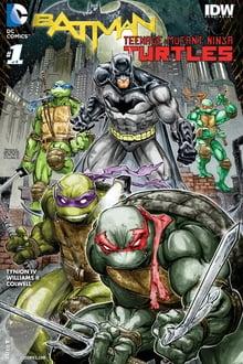 batman vs. teenage mutant ninja turtles torrent descargar o ver pelicula online 1