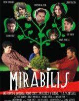 mirabilis torrent descargar o ver pelicula online 9