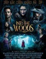 into the woods torrent descargar o ver pelicula online 2