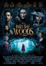 into the woods torrent descargar o ver pelicula online 1
