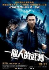 kung fu jungle torrent descargar o ver pelicula online 1
