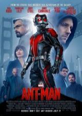 ant-man torrent descargar o ver pelicula online 1
