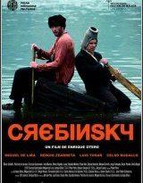 crebinsky torrent descargar o ver pelicula online 15