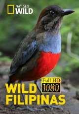 wild filipinas capitulos 1 al 2 torrent descargar o ver serie online 1