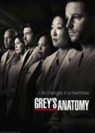 anatomia de grey 14×23 torrent descargar o ver serie online 5