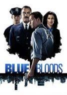 blue bloods 8×13 torrent descargar o ver serie online 8