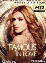 famous in love 2×2 torrent descargar o ver serie online 2