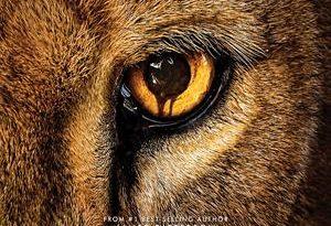 zoo - temporada 3 capitulos 5 al 13 torrent descargar o ver serie online 7