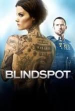 blindspot 3×13 torrent descargar o ver serie online 1