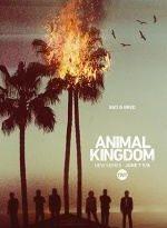 animal kingdom 2×2 torrent descargar o ver serie online 2