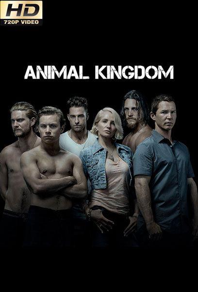 animal kingdom 2×2 torrent descargar o ver serie online 1