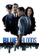 blue bloods 8×1 torrent descargar o ver serie online 13