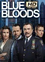 blue bloods 8×1 torrent descargar o ver serie online 5