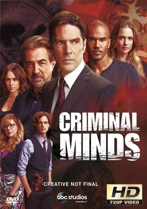 mentes criminales 13×9 torrent descargar o ver serie online 1