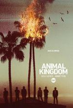 animal kingdom 2×7 torrent descargar o ver serie online 1