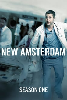 new amsterdam 1×01 torrent descargar o ver serie online 1