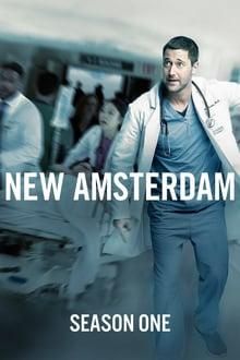 new amsterdam 1×02 torrent descargar o ver serie online 1