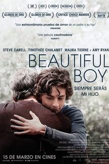 beautiful boy, siempre serás mi hijo torrent descargar o ver pelicula online 1