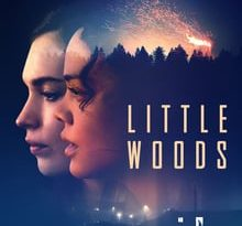 little woods torrent descargar o ver pelicula online 12