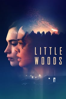 little woods torrent descargar o ver pelicula online 1