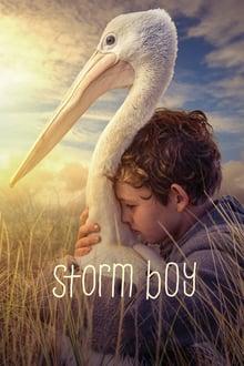 storm boy torrent descargar o ver pelicula online 1